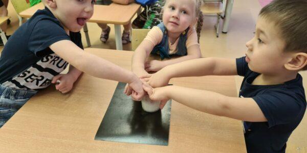Реализация познавательно-исследовательского проекта с детьми младшей группы