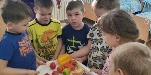 Реализация педагогического проекта «В гостях у Пугало» в группе компенсирующей направленности